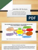 CONTROLES DE LECTURA GRÁFICOS PERSONALES