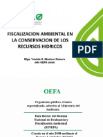 Fiscalización Ambiental AAA Mantaro 22.03.pptx