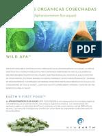 Wild AFA alga Silvestre cosechada por New Earth en lago Klamath