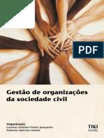 2. Gestão de Organizações da Sociedade Civil. p. 35-65.pdf