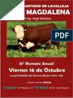Santa Magadalena Catalogo 2020