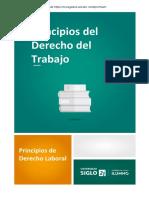 Derecho del trabajo y seguridad social Canvas Rezagados.pdf