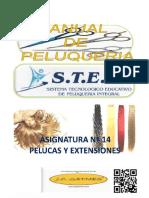 ASIGNATURA N° 14 PELUCAS Y EXTENSIONES