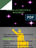 HUMAN LOCOMOTION AND MOVEMENT