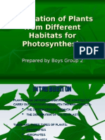 ADAPTATION OF PLANTS FROM DIFFERENT HABITATS FOR PHOTOSYNTHESIS