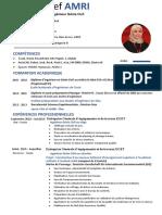 CV Afef AMRI 2020