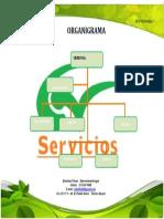 Organigrama cv servicios