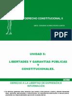 CLASE 1F- LIBERTADES Y GARANTIAS CONSTITUCIONALES  -  CONSTI II - ERG