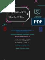 2MM42_TRABAJO.FINAL_24_Peláez Chacon Concentración.pptx