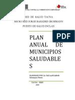 PLAN ANUAL DE MUNICIPIOS SALUDABLES 2019