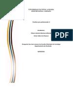 informe-de-practicas-pre-profecionales-II-granja-san-jose..docx