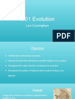 5.01 Evolution