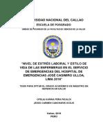 PEÑA Y CANCHARIS_MAESTRIA_2019.pdf