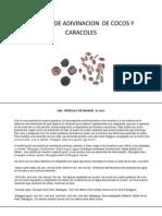 metodo de adivinacion de cocos y caracoles