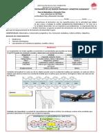 Guia_de_aprendizaje_virtual_septimo_matematicas_y_educacion_fisica_13_al_16_de_octubre
