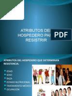 PP2 - VACUNAS