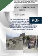 Estudios de Vulnerabilidad y Medio ambiente.docx