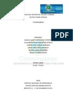 ENTREGABLE-ESTRUCTURAR CARGOS-COOMINOBRAS 2015.pdf