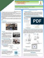POSTER_master_2_2017.pdf