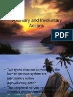 VOLUNTARY AND INVOLUNTARY ACTION
