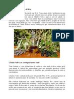 FR171123_F_Frankreich_30.pdf
