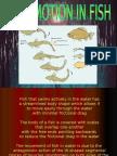 LOCOMOTION IN FISH