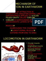 LOCOMOTION IN EARTHWORM