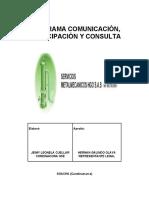 PROGRAMA COMUNICACIÓN PARTICIPACIÓN Y CONSULTA