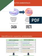 Identificacion de Aspectos ambientales en Actividades Productivas