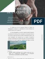 parametros morfometricos (1) (1).pptx