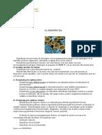 curs 7 - Infirmiera -22.09.2020.pdf