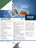 Pulso País - Octubre 2020