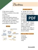 Bactérias.pdf