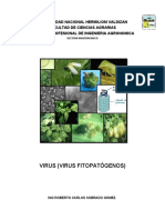 manualdevirusvirusfitopatgenos-100823110237-phpapp02.docx