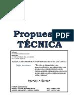 P-AMC-198-2013-TECNICA 2da C