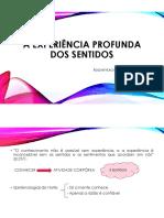 A experiência profunda dos sentidos.pdf