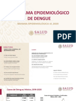 Pano Dengue 41 2020