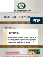 Tutoría de fitopatología