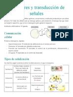 Receptores y transducción de señales