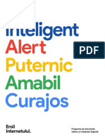 Programa Eroii Internetului - RO curriculum.pdf