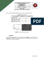 Formato de consulta_LSPM