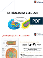 Clase 3 Generalidades (2020-2) TEAMS.pdf