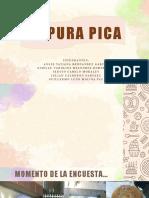 D` PURA PICA