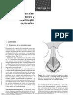 Manual_de_otorrinolaringología_(2a._ed.)_----_(MANUAL_DE_OTORRINOLARINGOLOGÍA_(...)) (1).pdf