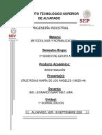 ESQUEMA MEXICANO DE NORMALIZACIÓN