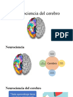 Neurociencia del cerebro.pptx