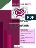 INFORME (LIBRO MAYOR)1 1(1).pdf