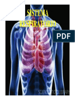Sistema respiratorio [Modo de Compatibilidade]