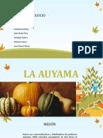 Auyama.pptx