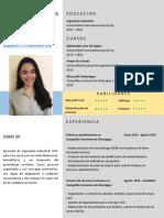CV Alejandra Flores